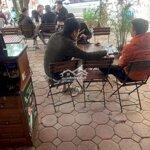 Bán cửa hàng kiot mặt đường lớn chuyển nhượng cafe