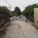 Cần bán gấp đất tân dân diện tích: 260mmặt tiền10m giá bán 6 triệu/m2