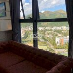 Nha trang apartments for rent in scenia bay