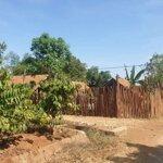 Bán đất sào mặt tiền komleo_thích hợp xây homes