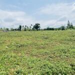 Cần bán đất giá rẻ phun thổ cư tại hợp phong hòa bình