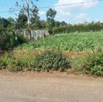 đất mặt tiền vành đai ql14-26 gần ủy ban xã eatu10×28m
