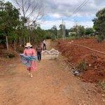 Bán đất cư suê giá đầu tư sinh lời