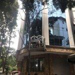 Cho thuê tòa vp hàng bún, mới tinh, 95mx7 tầng