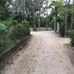 đất kiệt 57 nguyễn hoàng nằm ngay sau trường học