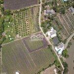 Thủ thừa - tân thành đất vườn lên thổ 1000m2