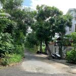 Bán Đất Biệt Thự Khu Dân Cư 13C Phong Phú Bình Chánh, Cách Trường Quốc Tế 50M, 268M2, Đã Có Sổ Riêng