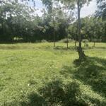 Bán mảnh đất đẹp làm nghỉ dưỡng siêu rẻ