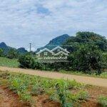 đất huyện kim bôi 2900m²
