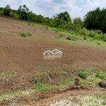 đất bàu cạn gần sân bay long thành giá bán 1 triệu8/m2