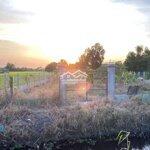 Bán đất làm nhà vườn trồng cây nuôi cá