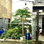 Bán đất phường tăng nhơn phú b, q9, tphcm