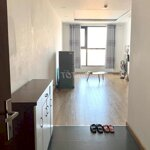 Cho thuê chung cư ecolake view 32 đại từ