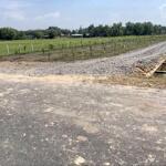 đất vườn củ chi giá rẻ 1053m2 3ty580 2mt đường nhựa, shr công chứng ngay và nuôn