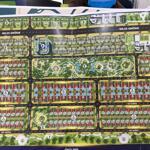 đơn vị độc quyên phân phối dự án the sang villa tại đn