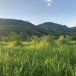 Bán mảnh đất thảo nguyên xanh