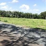 Cần Bán Đất Biệt Thự View Biển Khu Đồi Ngọc Tước Bãi Sau 69 Triệu/M2.