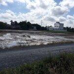 Bán 3036M2 Đất Cln Xã Bình Chánh Huyện Bình Chánh