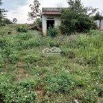 Cần bán gấp vườn tại xã đăk nd rung