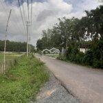 Bán Gấp Mảnh Đất Vườn Trồng Cam , 1800M2, Giá Bán 2Ty5