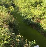 Cần bán lô đất nông nghiệp view 3 mặt suối cách trung tâm thị trấn 3km