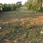 đất cho thuê đất nền 1.300m²
