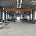 Công ty long thành cho thuê gấp xưởng 1300m2 và 3500m2 tại tứ kỳ, hải dương. tiêu chuẩn công nghiệp