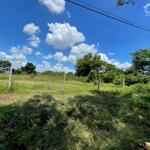 Bán mảnh vườn 2800.3m² giá bán 350 triệu