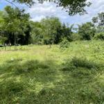 Cần bán đất tại kim bôi, hoà bình. diện tích 7000m2 có 400m2 ont giá rẻ