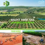 Cần bán 3743m2 đất cây lâu năm xã hòa thắng giá chỉ 560 triệu, cạnh bên trang trại văn minh và gần kênh nước