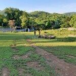 Bán nhanh lô đất 5832m có 600m đất ở tại cư yên