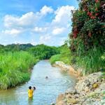 Tuyệt phẩm sinh thái ven sông ngay trung tâm thành phố biên hoà, sổ hồng riêng giá từ 1,2 tỷ/ nền