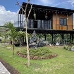 Bán gấp, vườn trái cây rộng 1000m2, có sẵn nhà cấp 4, hồ cá sau nhà
