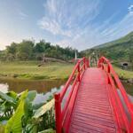 Bán lô đất nền khu bt nghỉ dưỡng hasu village kỳ sơn, hòa bình 350m, sđcc, view núi hùng vĩ
