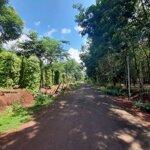 đất đất nền giá đầu tư 300m2