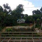 Chính chủ cần bán nhà đất nghỉ dưỡng lâm đồng