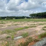 Cần bán gấp lô đất thổ cư 100m2 mặt tiền đường nhựa 6m tân quan