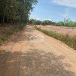 Ra nhanh lô đất đường tránh trạm ql14, đường 29m