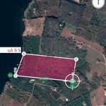 4.6ha đất view hồ trung tâm xã, 150m mặt hồ, giá rẻ 1.3 tỷ/ha.