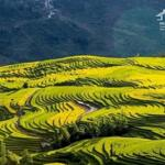 Bán mảnh đất siêu đẹp – lao chải – ý tý