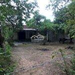 Nhà gỗ 3 gian và đất ở kỳ tân cách vincom 2km