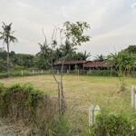 đất vườn giá rẻ củ chi 517m2 1ty211 vuông vức shr công chứng sang tên ngay