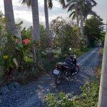Bán Đất Vườn Trọn Sổ Đỏ Lô Nhì Đường Liên Ấp 4 - 5, Xã Đa Phước, Diện Tích 30X34M (1000M2) Giá Bán 5.5 Tỷ