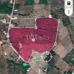 Bán gấp 4 hecta đất huyện mang yang
