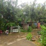 Sang quán cà phê sân vườn hơn 500m2