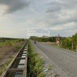 Bán lô đất vườn củ chidiện tích537m2 giá rẻ 1ty254 shr, cách mặt tiền đường nhựa ba sa 100m