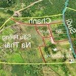 Bán farm nghỉ dưỡng ven sân bay đà lạtdiện tích4600m2 view sân bay