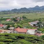 Cần bán lô đất 1515m2 thích hợp làm nhà vườn, homestay nghỉ dưỡng