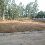 Chủ đất cần bán đất đồng trạng cổ đông 2000m