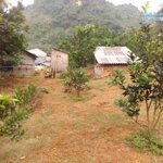 Chủ cần tiền bán gấp 1ha có 400m đất ở tại đú sáng kim bôi hợp đầu tư giá rẻ!!